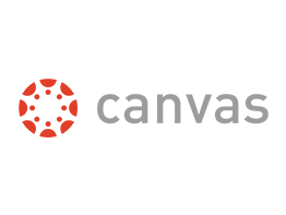 Custom software development - Canvas