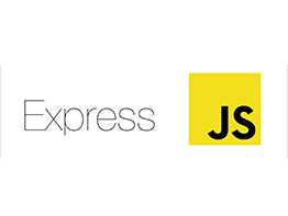 Custom software development - Express JS