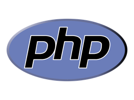 Custom software development service - php