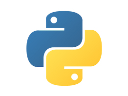 Custom software development service - Python